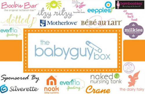 BabyGuyNYC Breastfeeding Box